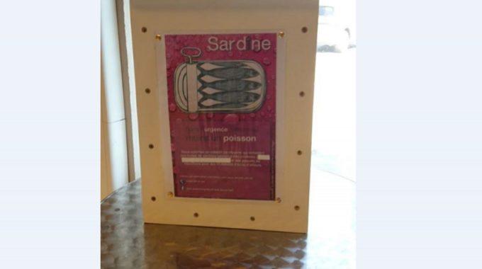 «Des Sardines Pour Les Sans Toit» Aide Dans L'urgence Des Sans-abris D'ici Ou D'ailleurs