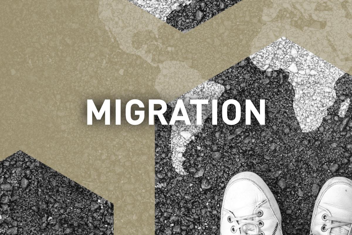 visuel_formation_migration
