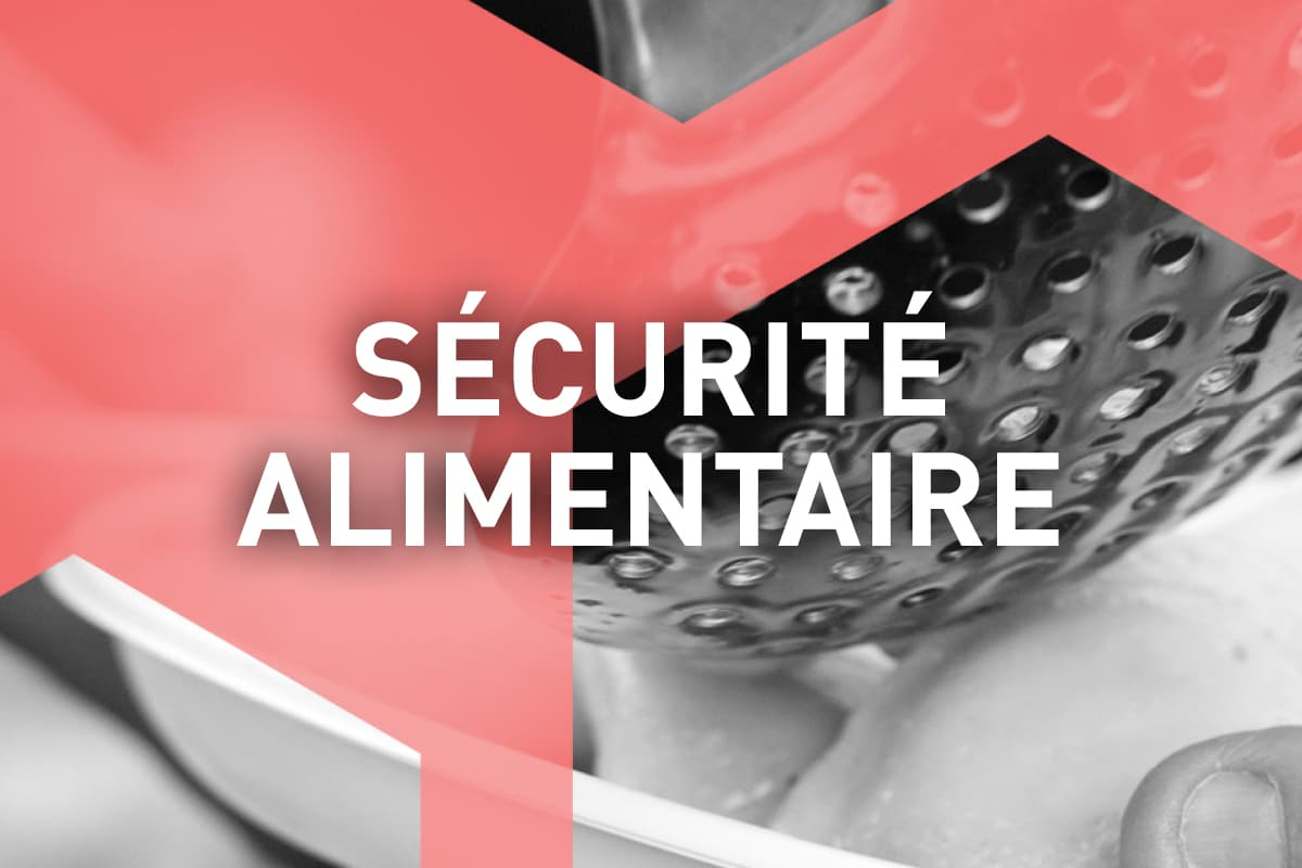 visuel_formation_securite_alimentaire